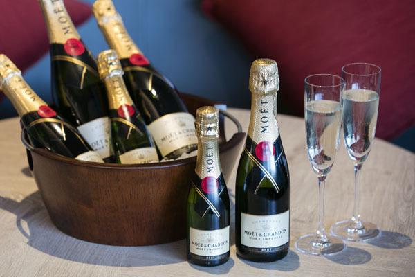シャンパンと絶景浴「ハロウィーンナイトプール」