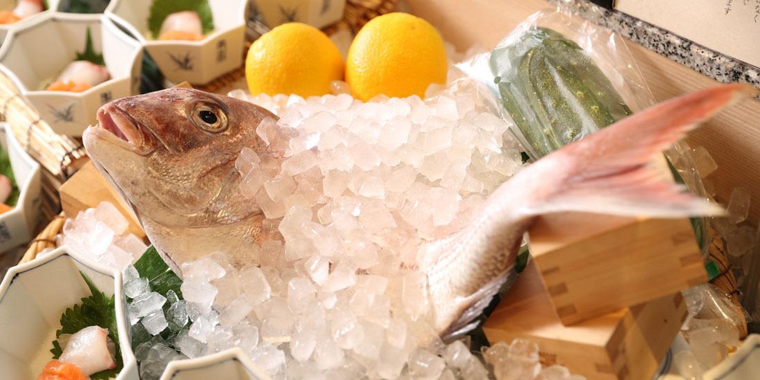 【万蓮夏フェア】淡路島産天然鱧や天然明石鯛など夏の食材を使った季節料理