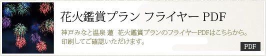 花火鑑賞プラン フライヤーPDF