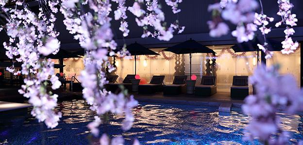 夜桜とナイトプール