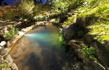 滝の流れる音を一番近くで感じるたか湯