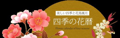 四季の花暦